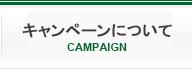 キャンペーンについて